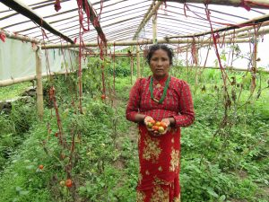 Nepal sustainable agriculture